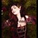 Sleeping Red Rose